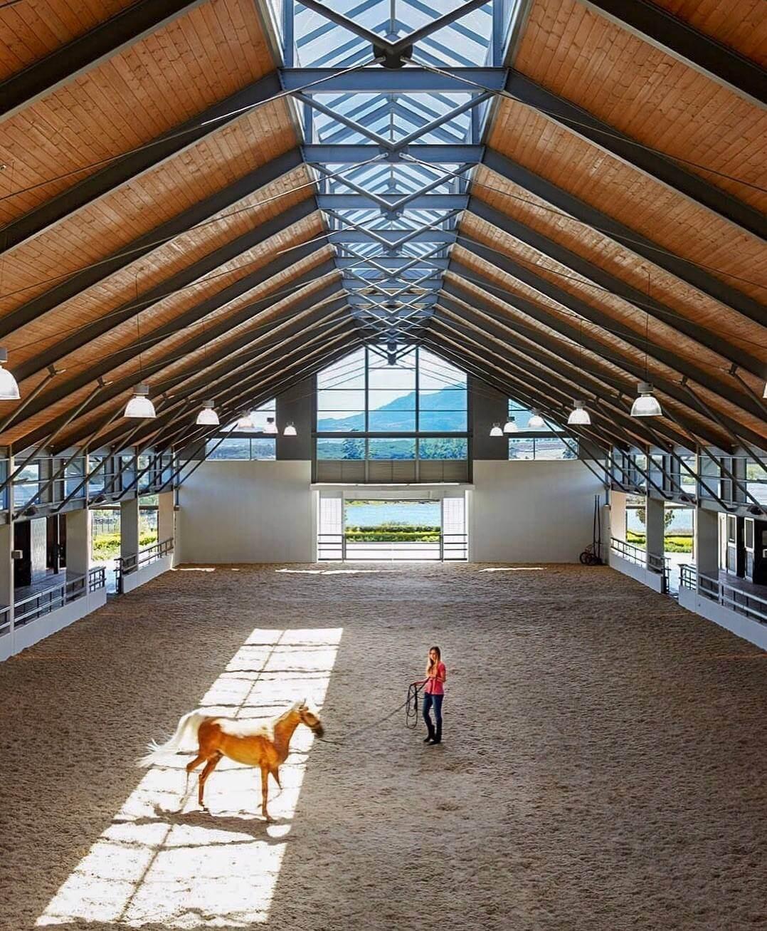 Equestrian Tours at Cavalli Estate