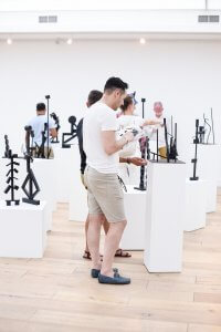 borderless art exhibition - cavalli estate